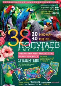 Выставка коллекции экзотических попугаев «38 попугаев»