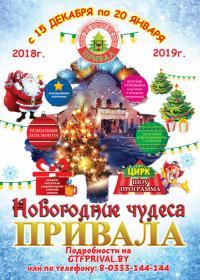 Новогодняя программа на базе отдыха «Привал»