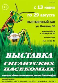 Выставка гигинтских насекомых