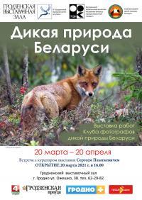 «Дикая природа Беларуси»